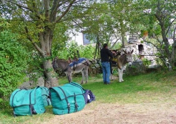 camping-lozere