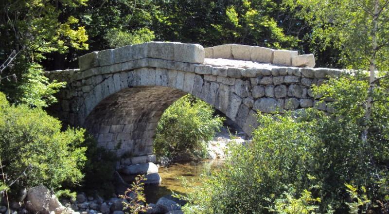 Pont de pierre sur le haut Tarn